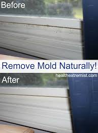 how to get rid of mold naturally 3 ways for getting prepare 10