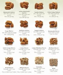 Cashew Nut Size Chart Product And Specifications