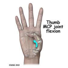 What Is Normal Range Of Motion For The Thumb