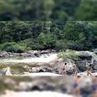 imagem de Matriz+de+Camaragibe+Alagoas n-13