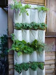 A hanging shoe organizer is perfect for your vertical INDOOR garden. Its  pockets are the ideal size for growing individual plants and herbs. Get the  DIY ...