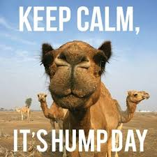Happy Hump Day Quotes Beauteous Keep Calm Its Humpday Quotes Quote Days Of The Week Wednesday Hump