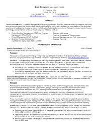 Business Intelligence Resume Resume Templates
