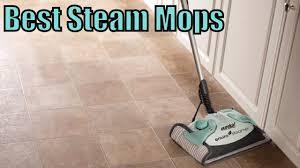 Best Mop For Kitchen Floor Top 5 Best Steam Mop Reviews 2017 Youtube