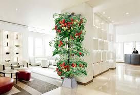 office gardening. Home/Office Gardening System- Nutri-Tower Office D