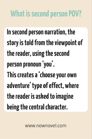 Different Points of View  Definitions and Tips   Now Novel SlidePlayer