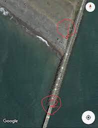 苫小牧 東港 釣り