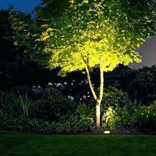 tree lighting ideas. Outdoor Tree Lighting Ideas In Ground Lights Are Used To Illuminate Specific Landscape R