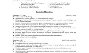 Hybrid Resume Template Free Indesign Best Functional Examples