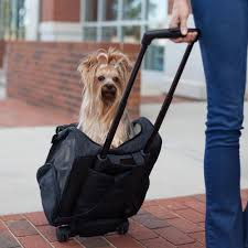 roll around travel dog carrier backpack 4 in 1