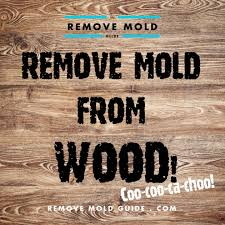 remove mold from wood 2016 guide to