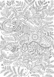 Small Picture Elephant Animal Kingdom adult colouring Adult Colouring