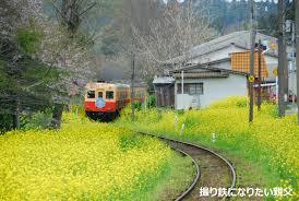 「小湊鉄道」の画像検索結果