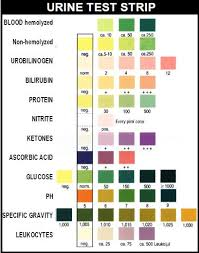 Color Chart Urine Test Strips Pin On Midwifery Birth References
