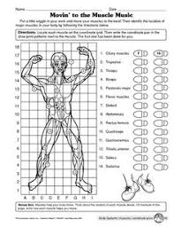 Metric System Worksheets High School Free Worksheets Library in addition Middle School Science Cloze Worksheet   Digestive System   TpT besides Inside Out Anatomy  The Urinary System   Worksheet   Education additionally Middle School Biology Cloze Worksheet   Human Body Systems   TpT besides Dewey Decimal System Worksheets Free For Elementary Students further Human Body Notebooking Pages  5    Iman's Home School furthermore Worksheets for all   Download and Share Worksheets   Free on furthermore human body systems answer pre post test 1 728    728×942 besides Digestive System Worksheets 3rd Grade images besides  moreover Best 25  Metric system ideas on Pinterest   Metric system. on systems worksheets middle school