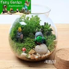 new bargain moss fairy garden micro landscape miniature garden glass small jar small bonsai desktop fairy