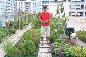 garden stories ong chun yeow the