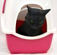 image covered cat litter. Marchioro Bill 1F Covered Cat Litter Pan Box W/Filter PINK Kitty Pet - B0721L1KVH Image