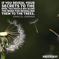Wind Quotes Quotes For Life