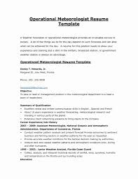 50 Unique Sample Government Resume Resume Writing Tips Resume