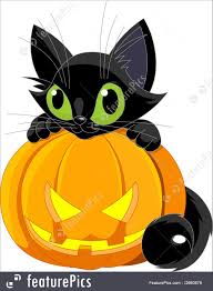 cute halloween black cat. Interesting Cat Halloween Cat A Cute Black Cat On A Pumpkin In Cute Black Cat G