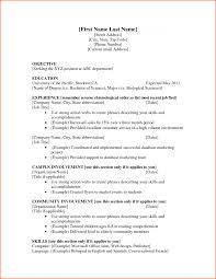 Job Resume Examples No Experience Template Idea Resumes And