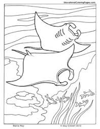 Small Picture Realistic Bull Shark Coloring page Day Care Pinterest Shark
