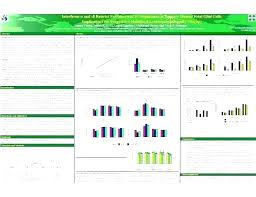 Academic Poster Template Best Of Size Lean Fresh Scientific