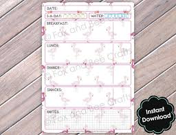 Daily Food Planner Flamingo Printable Daily Food Diet Sheets Food Diary A5 Size