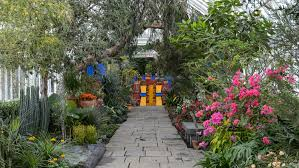 see photos of the botanical garden s extravagant frida kahlo exhibition