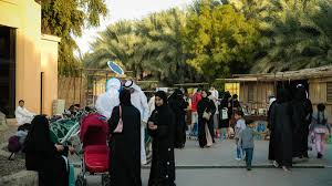 Top 10 Attend Weekends At The Oasis In Al Ain See A