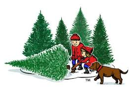 Cut Your Own Christmas Tree Pricing. Hanauer's Tree Farms. htf-cutting-new