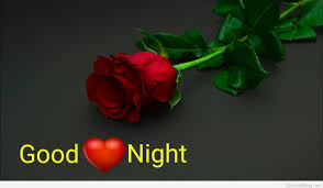 good night with flowers good night with red rose wallpapers