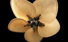 leaf ceiling fan. Antique Ceiling Fans | Fan With Palm Leaf Blades No Light