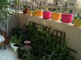 garden nurseries near me. Garden Nursery Near Me Photograph Plant Nurseries In Warsa 3H4zVV2g O