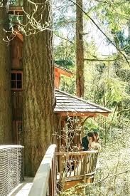 outdoor cat tree house outdoor outdoor wedding pacific northwest venues outdoor tree house plans outdoor diy outdoor cat tree house