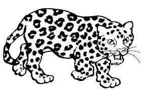 Baby Jaguar Coloring Pages Jaguar Coloring Baby Jaguar Coloring