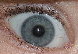 Different Shades Of Blue Eyes Chart Eye Color Wikipedia