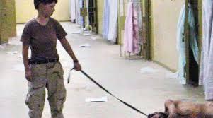 Resultado de imagen para horrorosas prisiones de ultramar de EEUu
