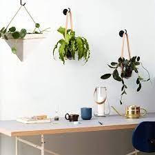 ceiling hooks for hanging plants metal