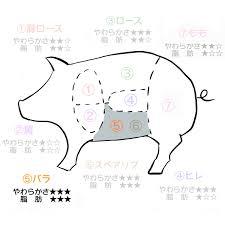 豚肉の部位を図解こま切れ肉とは豚ロースってどこ