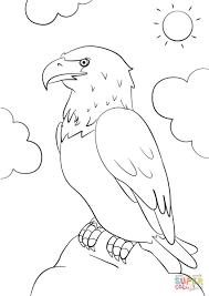 Cartoon Bald Eagle Coloring Page 15 Bald Eagle Coloring Page