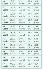 Growth Spurt Chart Weeks 30 40 Pregnancychart Baby Weight
