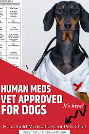 Dog Friendly Over The Counter Medications Chart Human Meds Vet Approved Before Giving Your Dog Medications