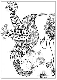 Mandala Coloring Pages For Adults Birds The Art Jinni