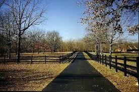 black horse fence vinyl bekaert wire brown vinyl horse fence49 vinyl