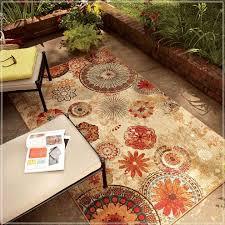8 x 10 indoor outdoor rug