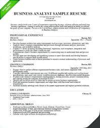 Entry Level Data Analyst Resume Enchanting Data Analyst Resumes Samples Entry Level Business Analyst Resume