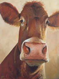 camile by cari humphry animal paintingsface paintingscanvas paintingsoriginal paintingscow