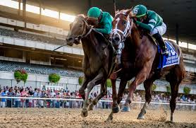 Breeders Cup Charts 2010 Free Breeders Cup Classic 2019 Past Performances Now Available